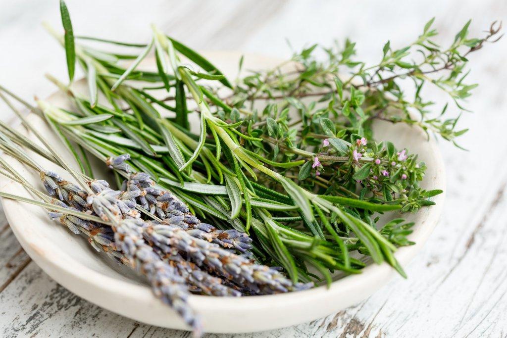 Tabak içerisinde kurutulmuş karabaş ot ve çeşitli taze baharatlar