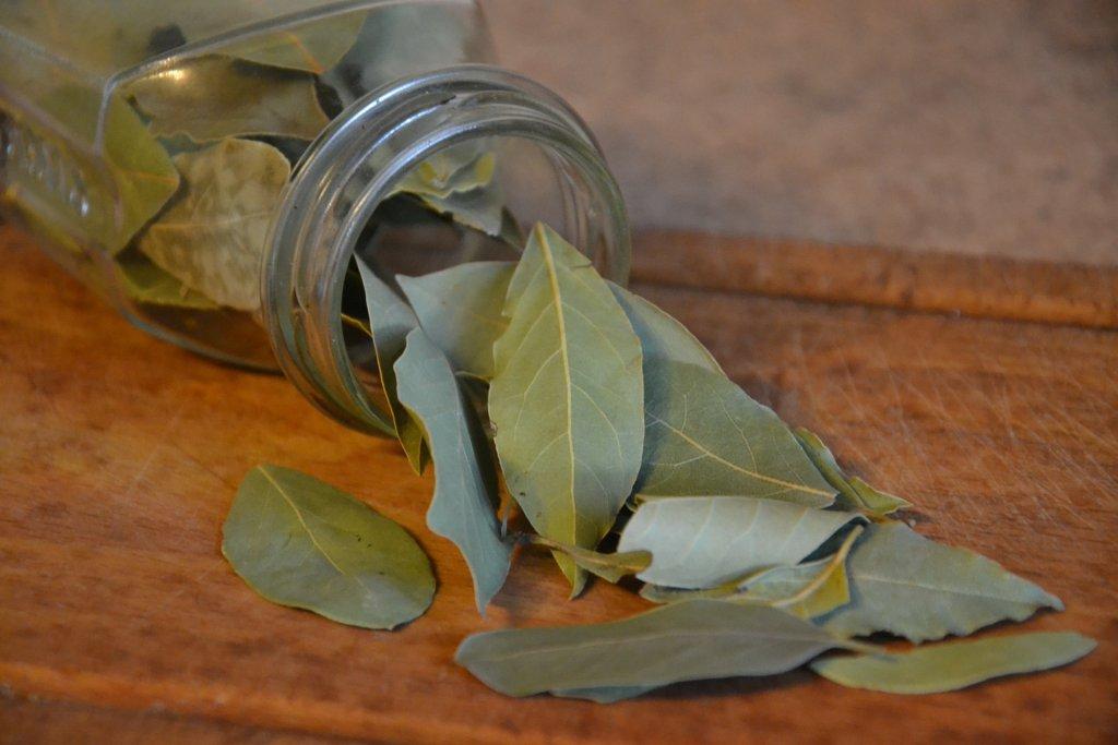 Kavanozdan dökülen kuru defne yaprağı