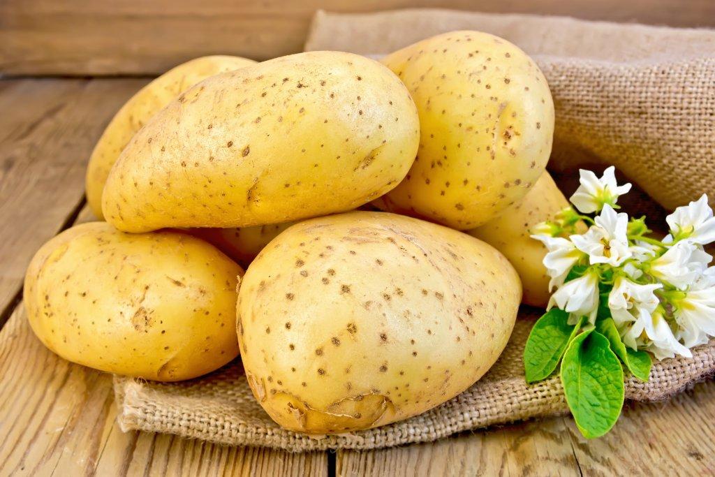 jüt kumaş üzerine yerleştirilmiş patatesler